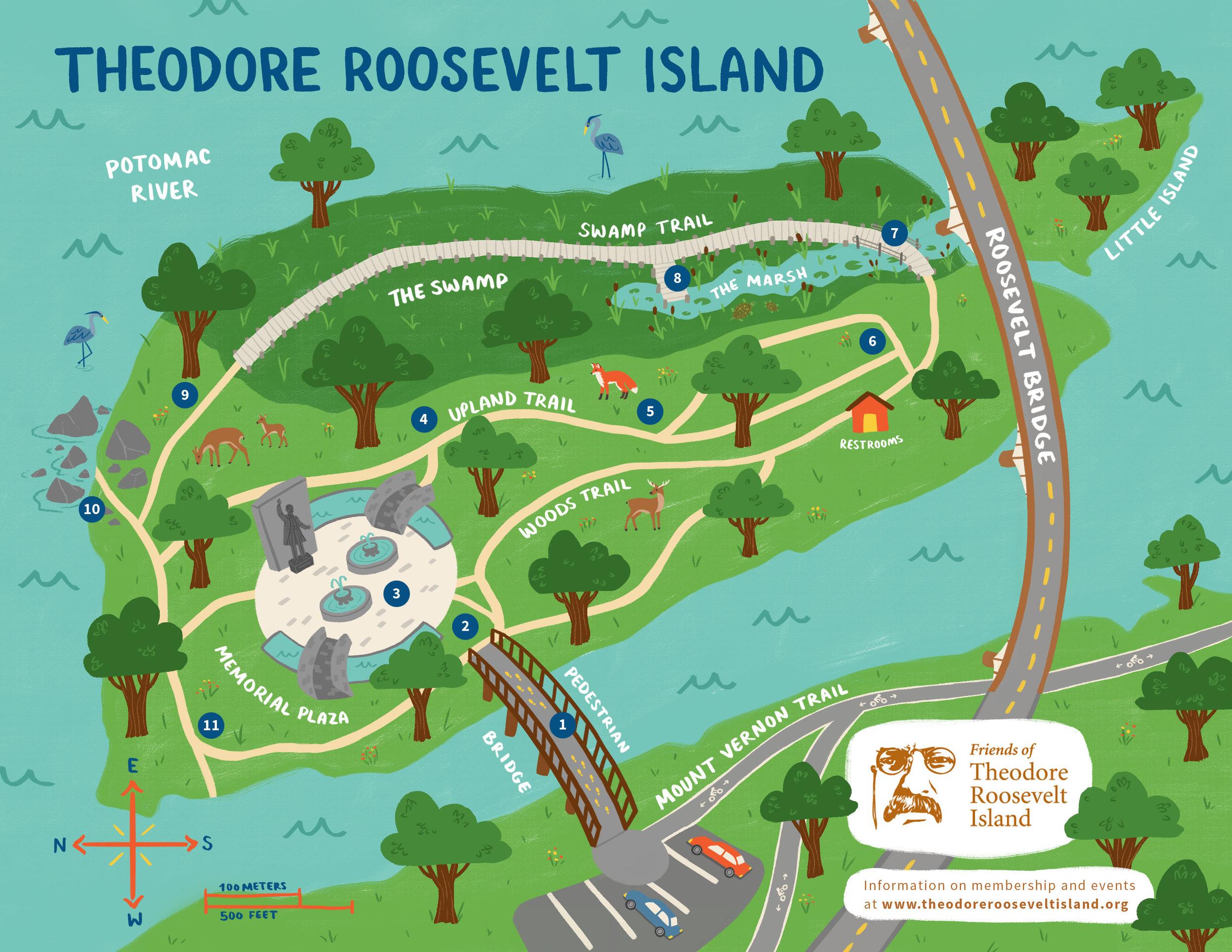 Theodore Roosevelt Island — Molly Fehr